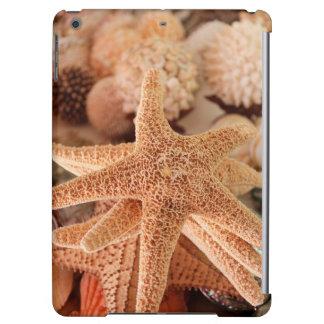 Dried sea stars sold as souvenirs iPad air cover