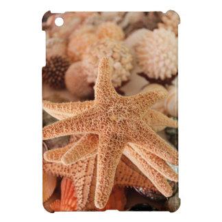 Dried sea stars sold as souvenirs iPad mini cases