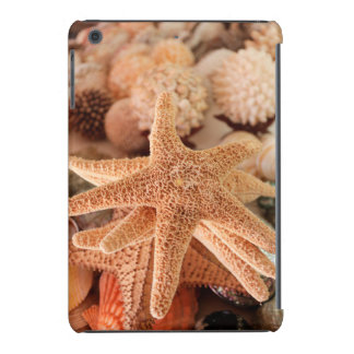 Dried sea stars sold as souvenirs iPad mini retina cases
