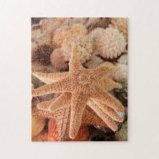 Dried sea stars sold as souvenirs jigsaw puzzle
