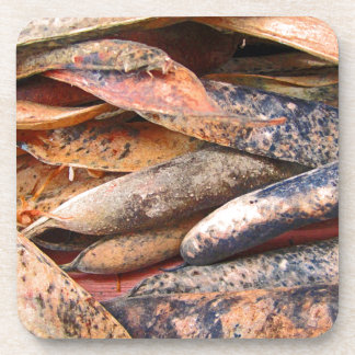 Dried Seed Pods Drink Coaster