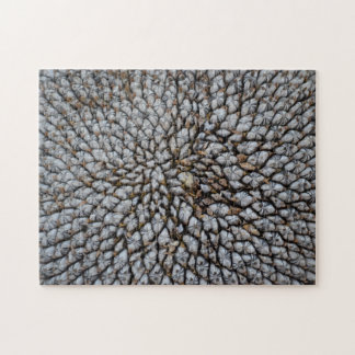 Dried Sunflower Jig Saw Puzzle