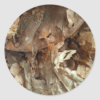 Dried tobacco leaves classic round sticker