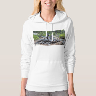 Dried Tree Trunk In The Forest Hoodie