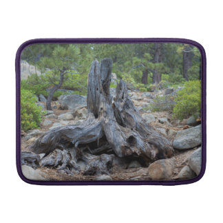 Dried Tree Trunk In The Forest MacBook Sleeve