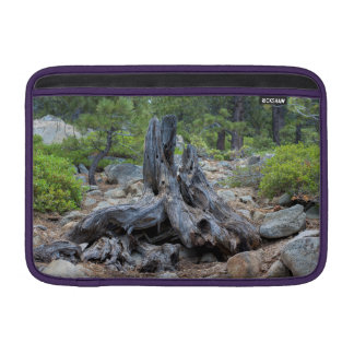 Dried Tree Trunk In The Forest Sleeve For MacBook Air