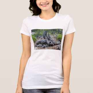 Dried Tree Trunk In The Forest T-Shirt