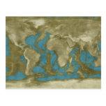 Dried World Map Postcard