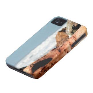 Drift Wood iPhone 4 Case