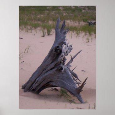 mmrogers Drift Wood Poster