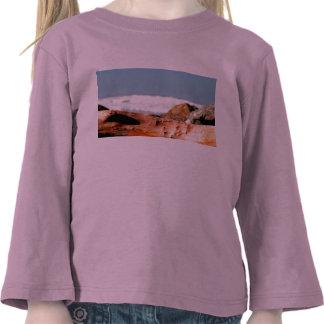 Drift Wood Tee Shirts