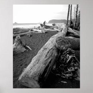 driftwood 2 del bw impresiones