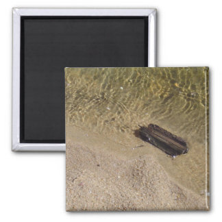 Driftwood 2 Inch Square Magnet