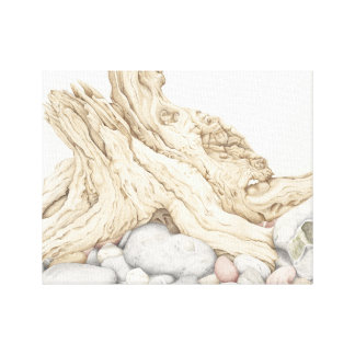 Driftwood and Pebbles Still Life in Pencil Canvas Print