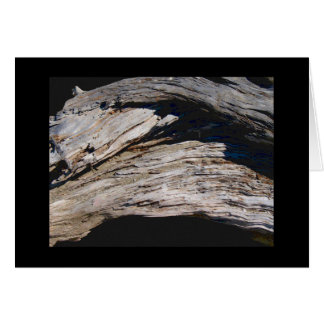 Driftwood Arch photo painting Card