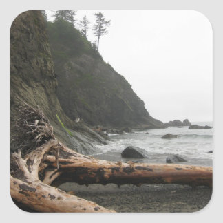 Driftwood at the beach square sticker