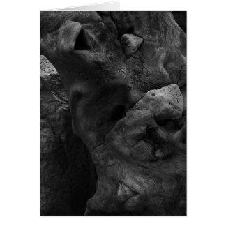Driftwood B&W Card