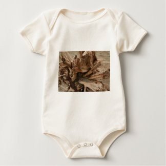 Driftwood Baby Bodysuit