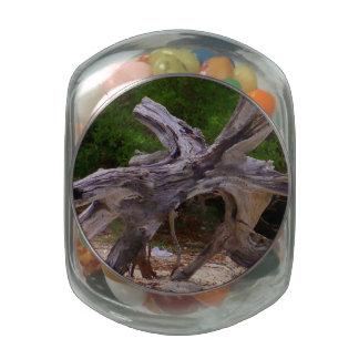 Driftwood Glass Jars