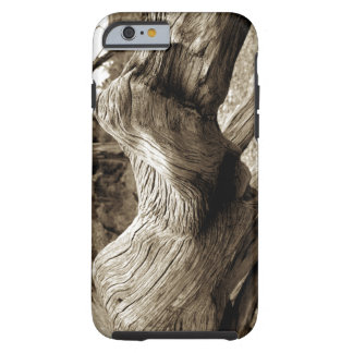 Driftwood Tough iPhone 6 Case