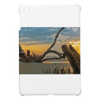 Driftwood Case For The iPad Mini