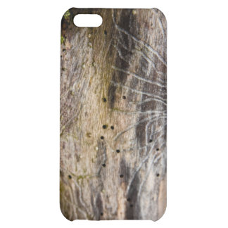 Driftwood close cover for iPhone 5C