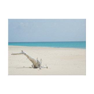 Driftwood del océano y de la playa impresion en lona