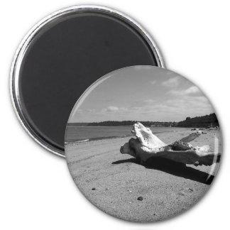 Driftwood Discovery Park 2 Inch Round Magnet