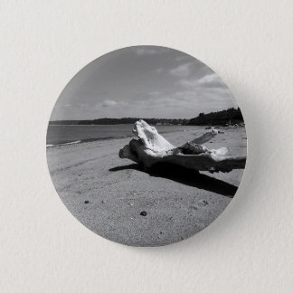 Driftwood Discovery Park Pinback Button