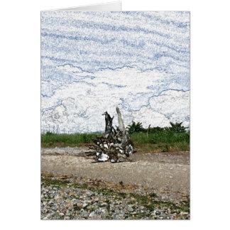 Driftwood en la tarjeta de nota de la playa