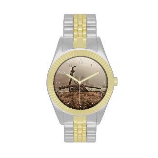 Driftwood en un reloj de niebla de la playa 2