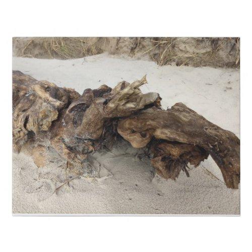 Driftwood Faux Canvas Print