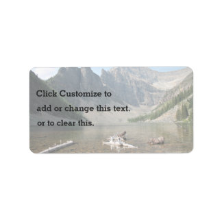 Driftwood in shallow water address label
