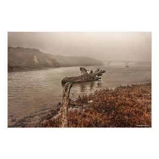 Driftwood in the Water Print