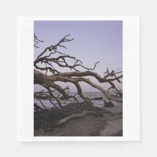 Driftwood Moon Napkin