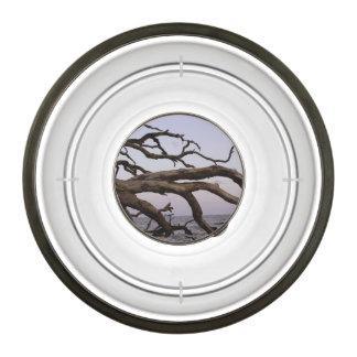 Driftwood Moon Pet Bowl