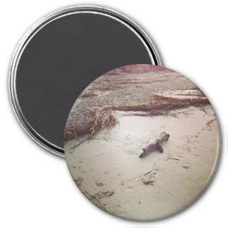 Driftwood on Sullivans Island Magnet