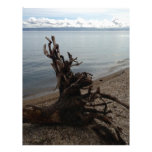 Driftwood on the Beach Personalized Letterhead