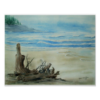 Driftwood on the Beach Watercolor Poster