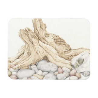 Driftwood & Pebbles in Colour Pencil Photo Magnet