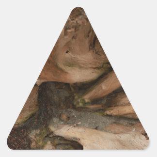 Driftwood Pegatina Triangular