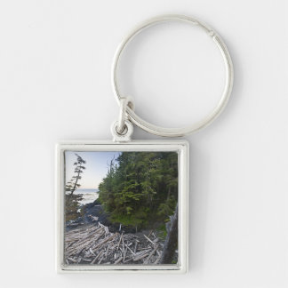 Driftwood piled up on a small secluded beach keychain