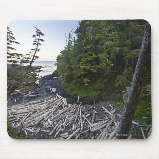 Driftwood piled up on a small secluded beach mouse pad