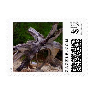 Driftwood Postage