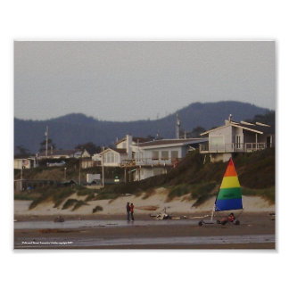 Driftwood Shores Poster