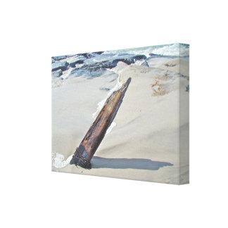 Driftwood soltado lona estirada galerías