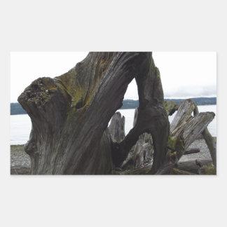 Driftwood Rectangular Sticker