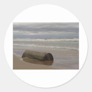 Driftwood Classic Round Sticker