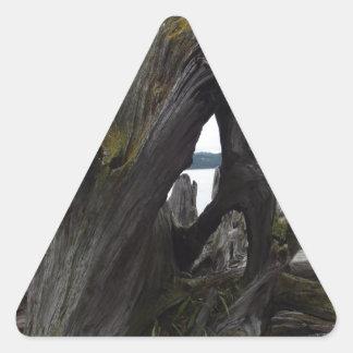 Driftwood Triangle Sticker