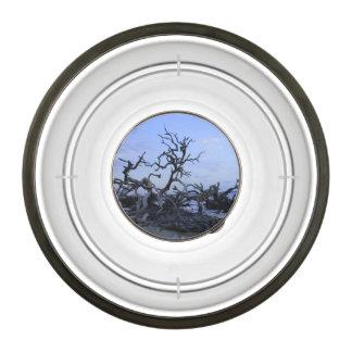 Driftwood Sunset Pet Bowl